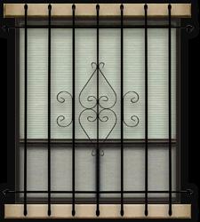 Window Guards